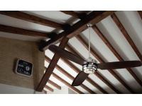 Ventilador techo cromo palas wengue 50989 CR