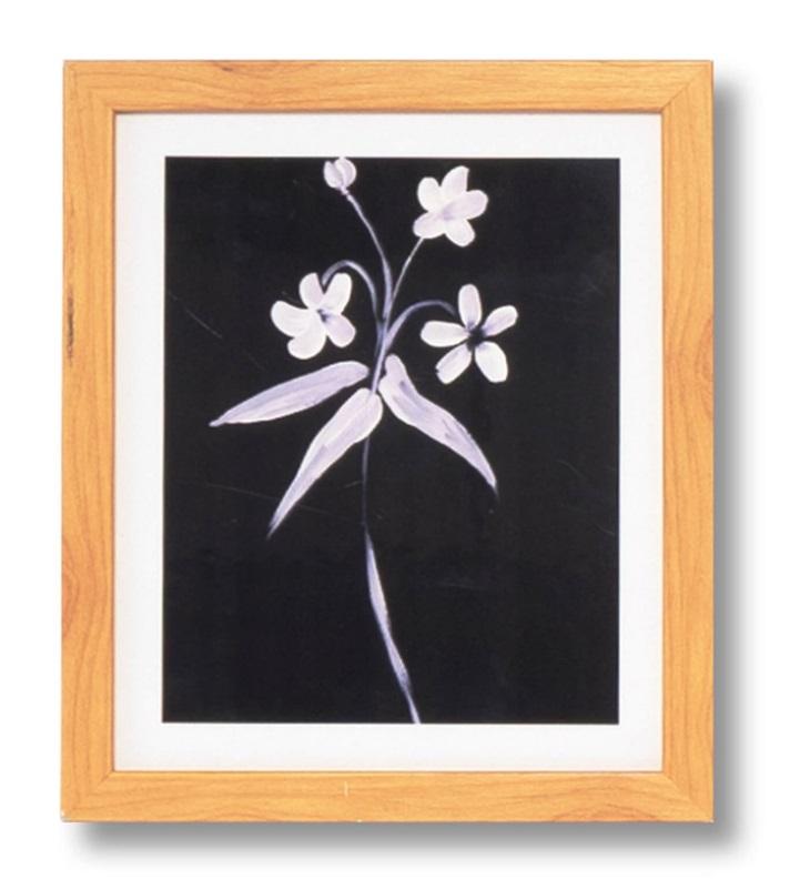 Cuadro Lily roble 25x30 cm