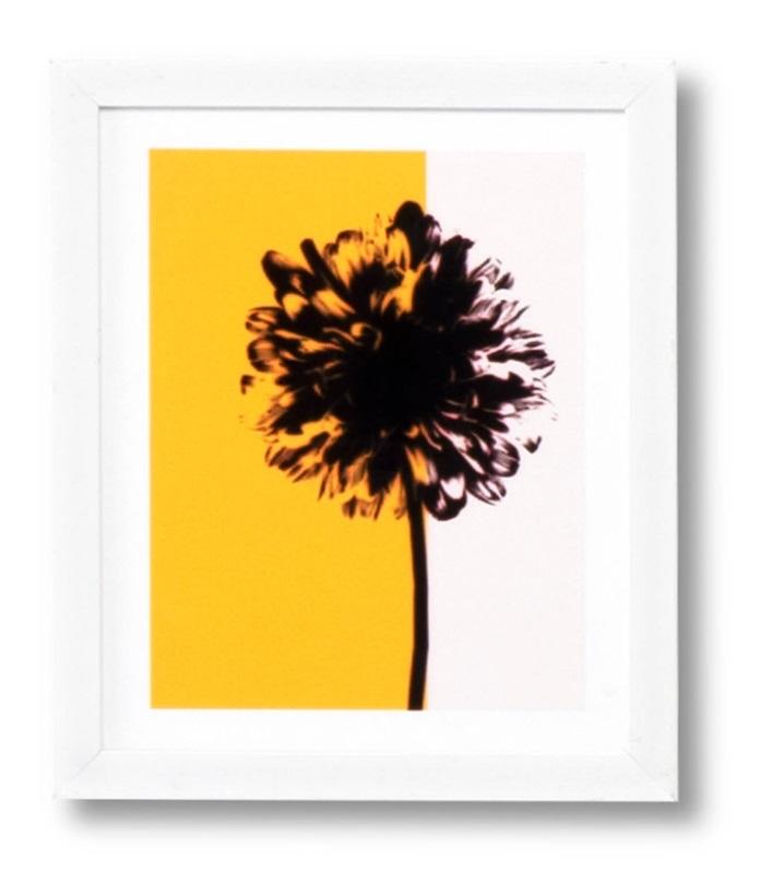 Cuadro Yellow blanco 25x30 cm